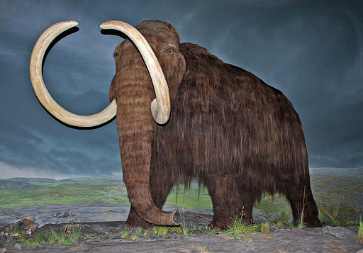 You're A Mammoth