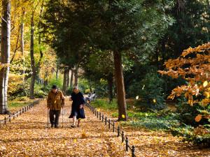 DE Landscape 08 Tiergarten Old Couple by Francisco Osorio on Flickr