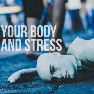 Your Body and Stress | God's Word Today