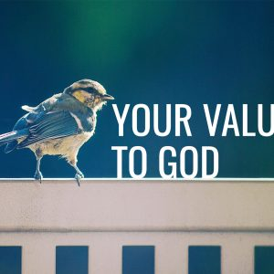 Your Value to God   God's Word Today